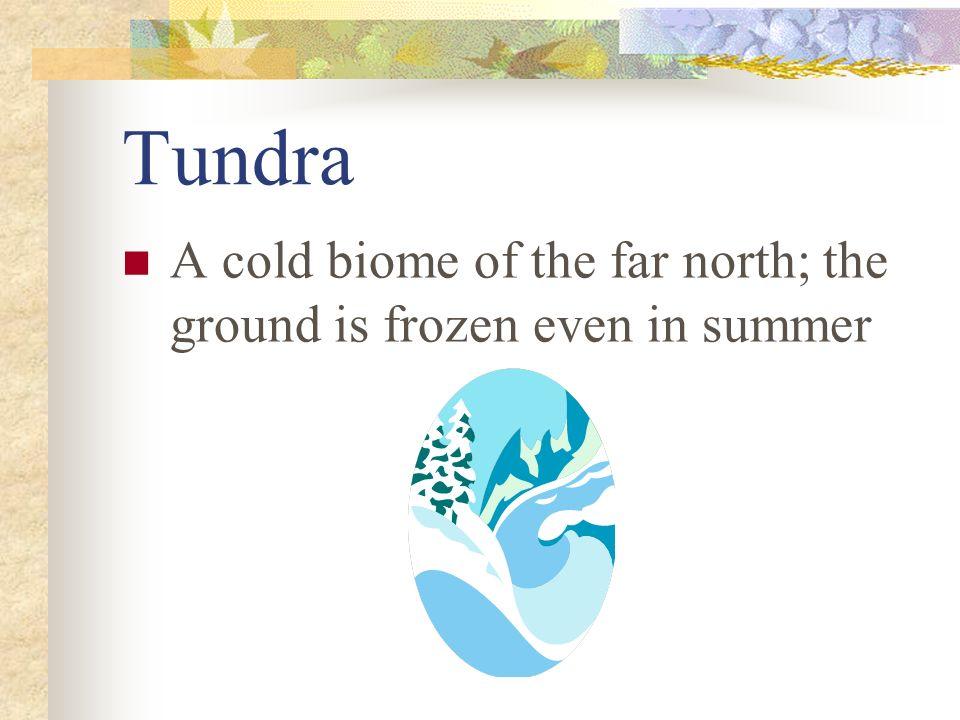 Tundra A cold biome of the far north; the ground is frozen even in summer