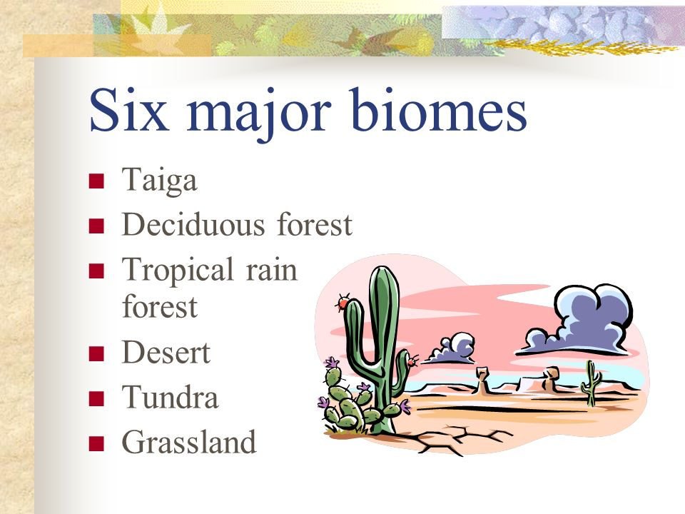 Six major biomes Taiga Deciduous forest Tropical rain forest Desert