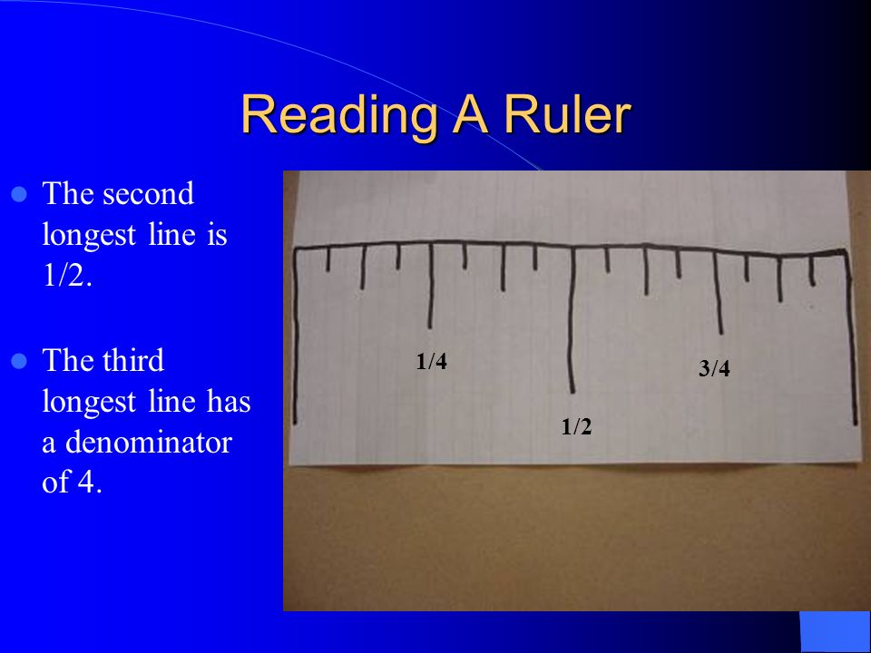 Reading A Ruler The second longest line is 1/2.