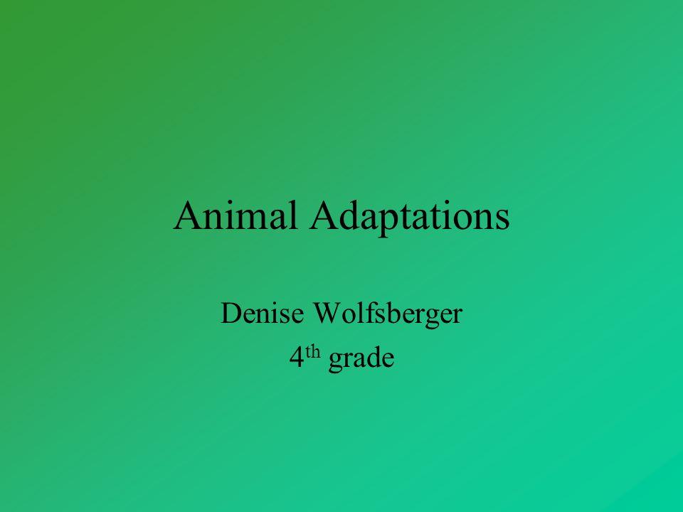 Denise Wolfsberger 4th grade