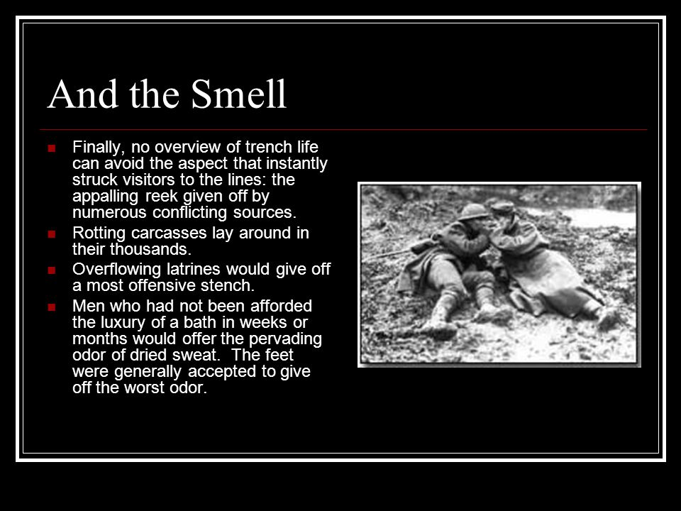 And the Smell