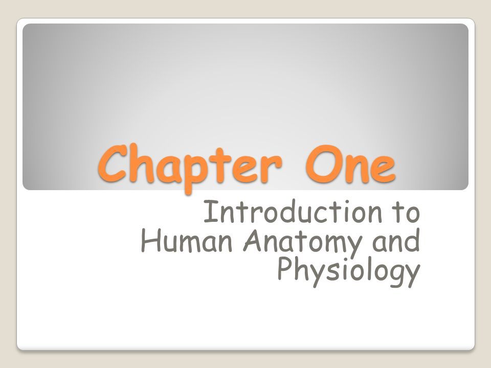 Introduction to Human Anatomy and Physiology - ppt video online download