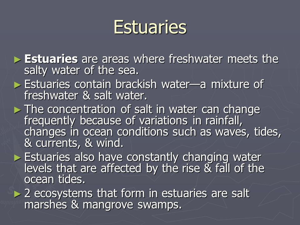 Estuaries Estuaries are areas where freshwater meets the salty water of the sea.