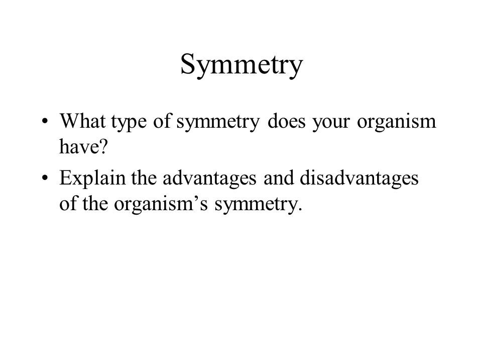 Symmetry What type of symmetry does your organism have