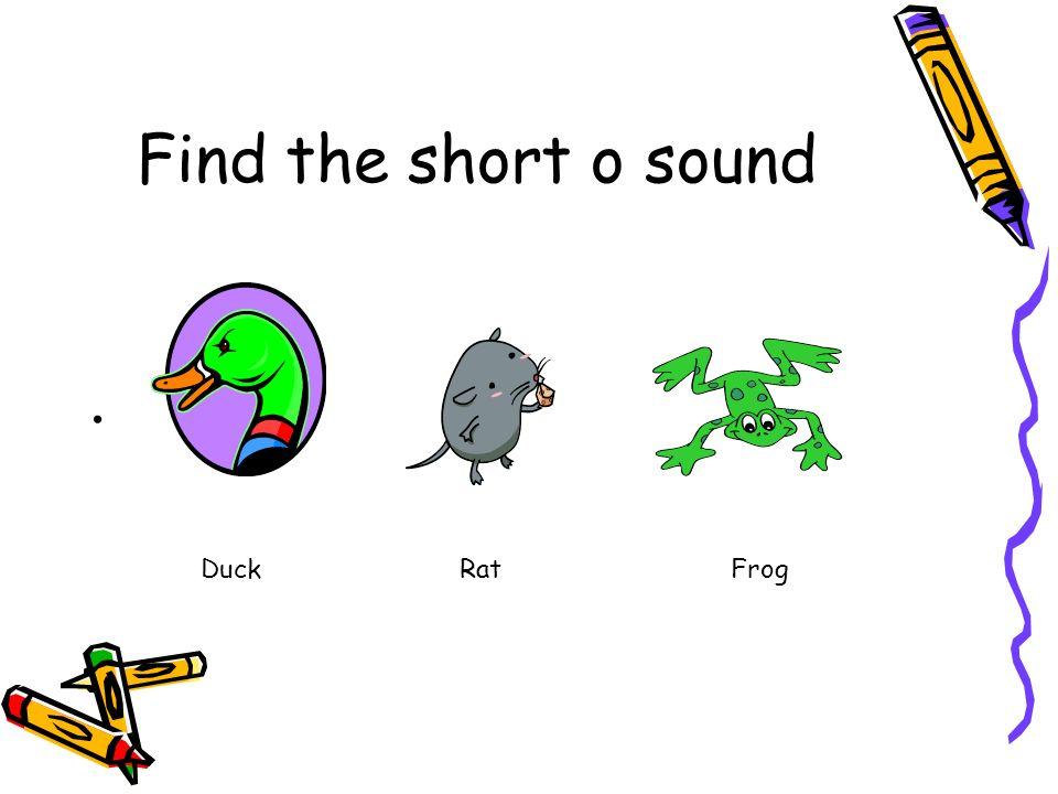 Find the short o sound Duck Rat Frog