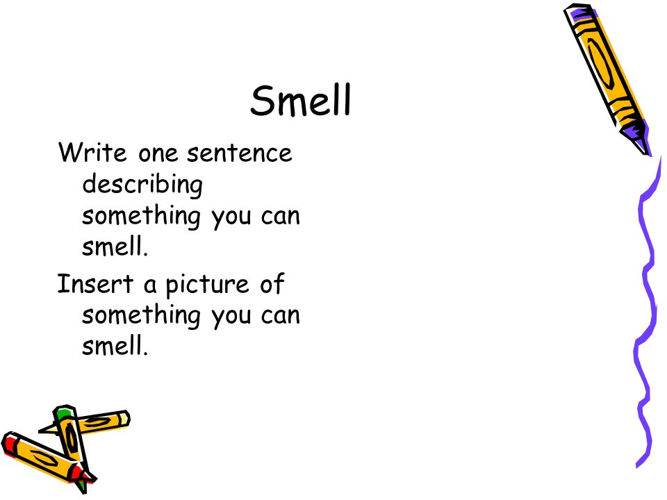 Smell Write one sentence describing something you can smell.
