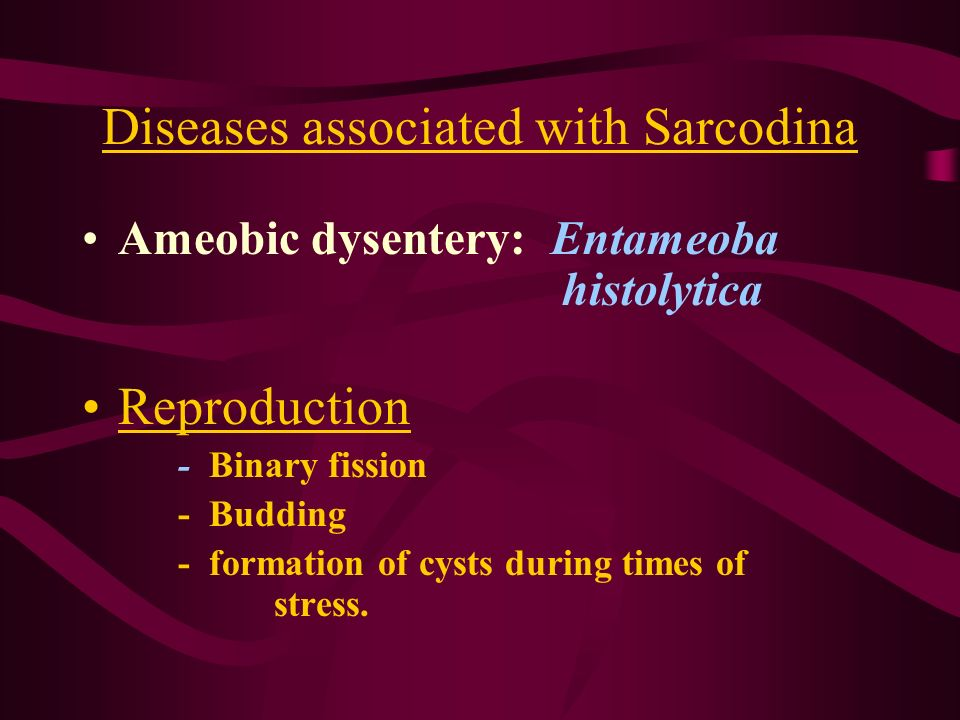Diseases associated with Sarcodina