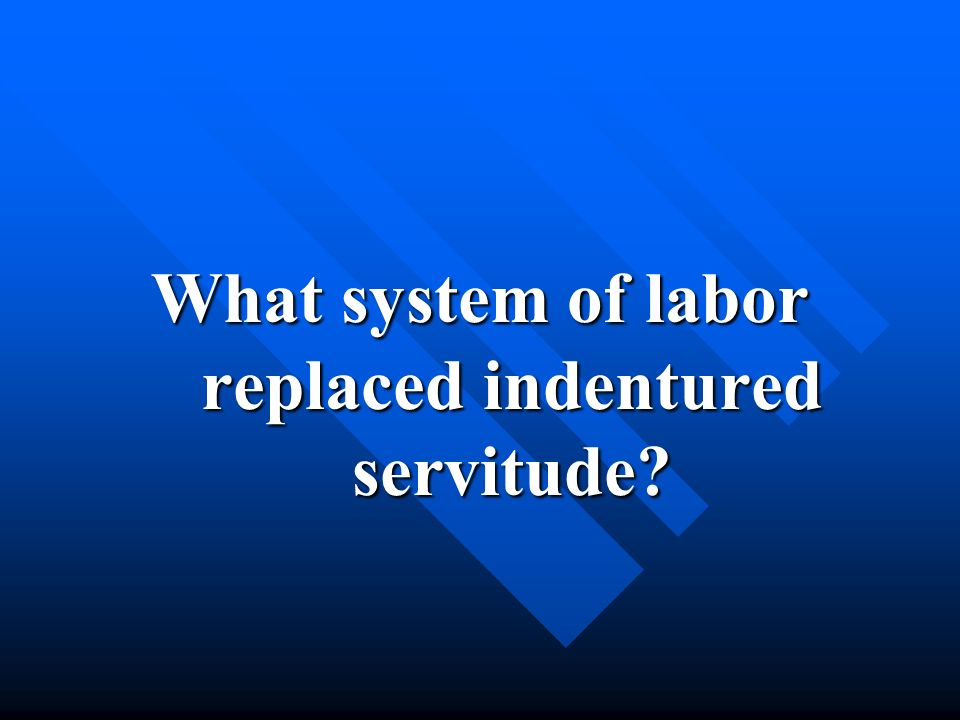 What system of labor replaced indentured servitude