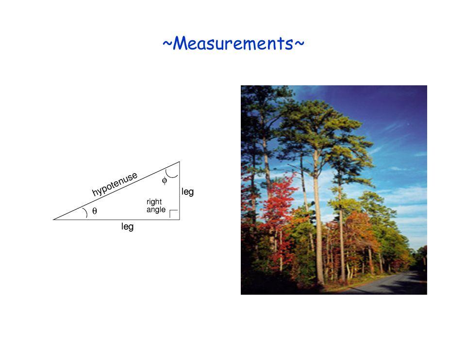 ~Measurements~