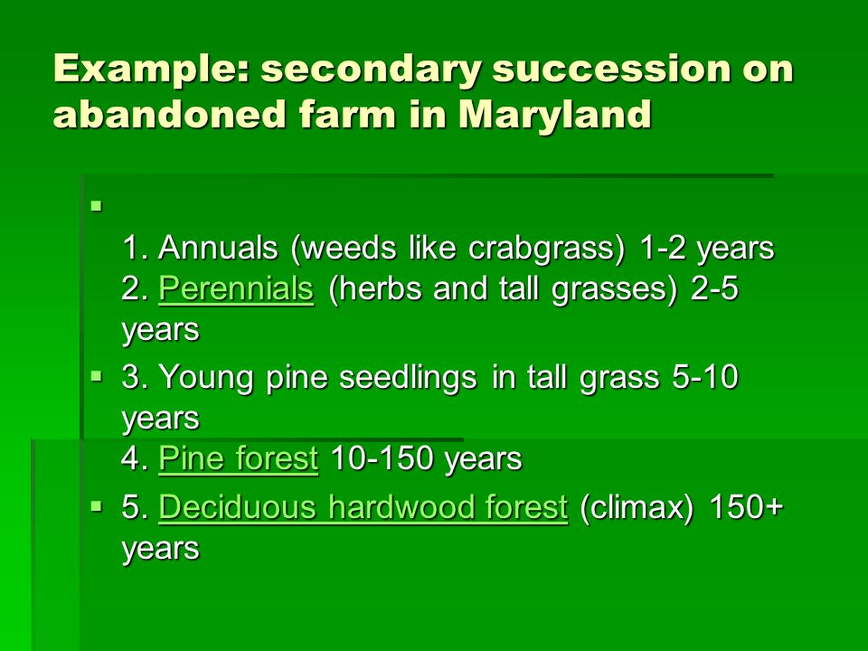 Example: secondary succession on abandoned farm in Maryland