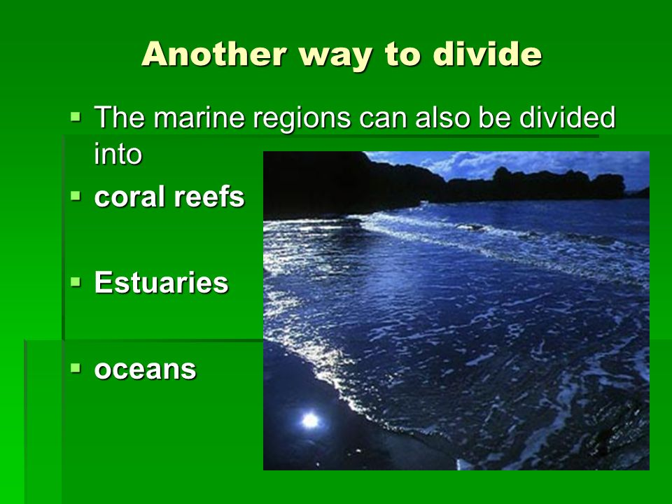 Another way to divide The marine regions can also be divided into