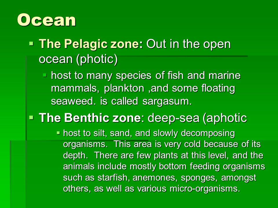 Ocean The Pelagic zone: Out in the open ocean (photic)