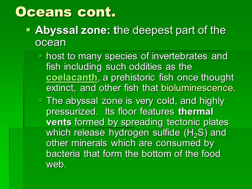 Oceans cont. Abyssal zone: the deepest part of the ocean