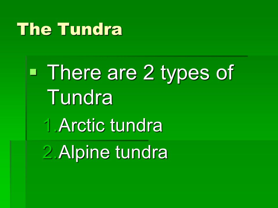 There are 2 types of Tundra