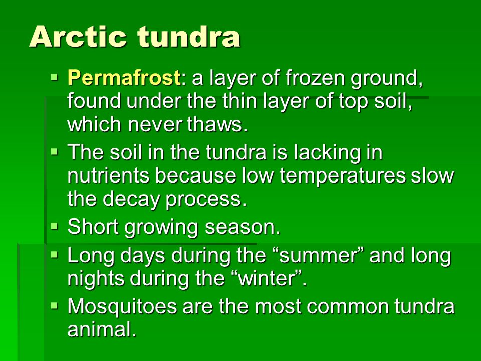 Arctic tundra Permafrost: a layer of frozen ground, found under the thin layer of top soil, which never thaws.