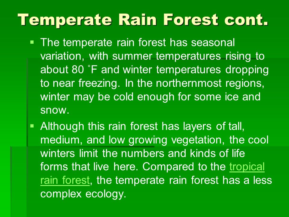 Temperate Rain Forest cont.