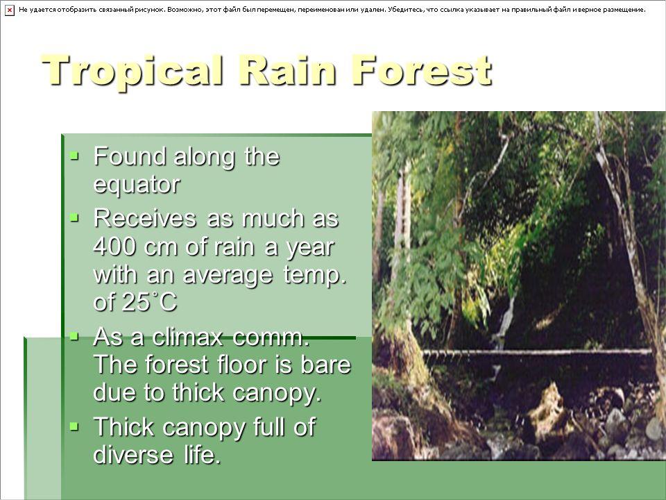 Tropical Rain Forest Found along the equator