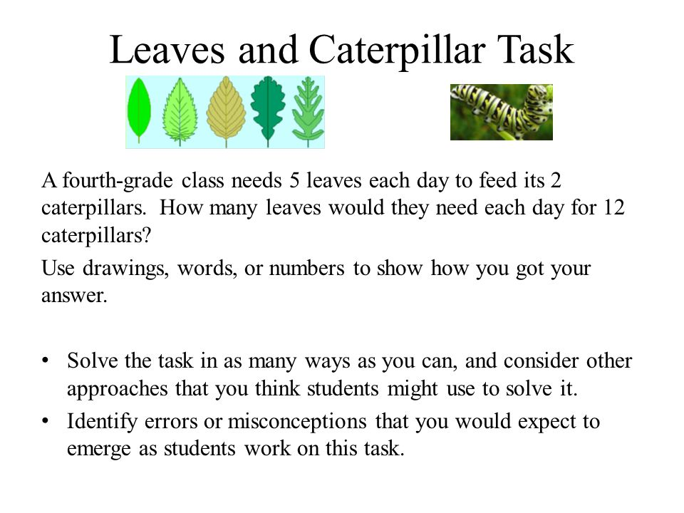 Leaves and Caterpillar Task