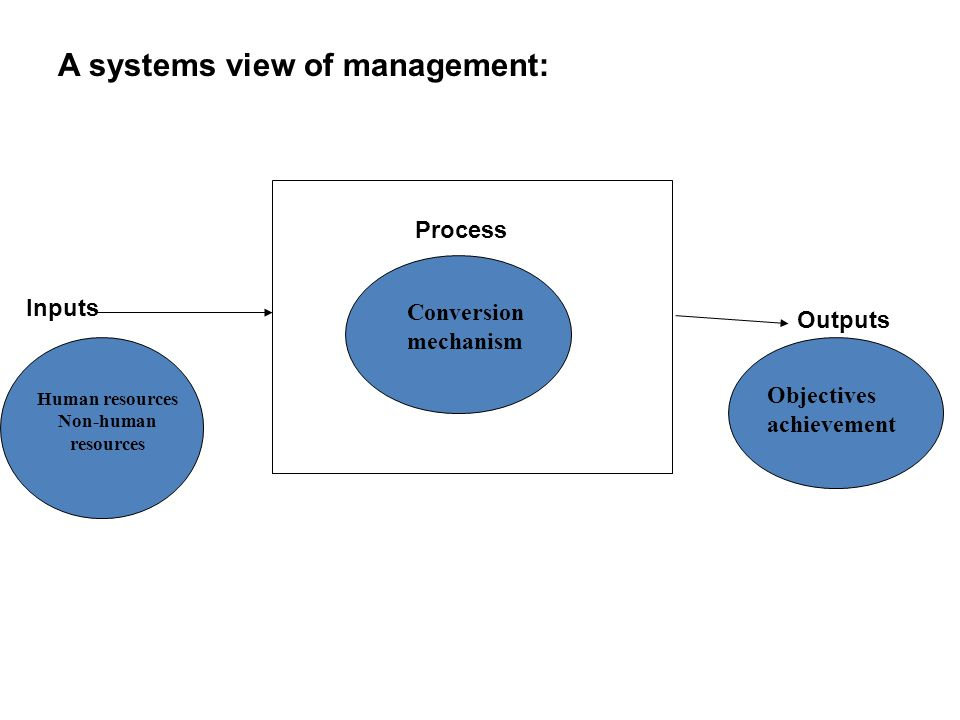 A systems view of management: