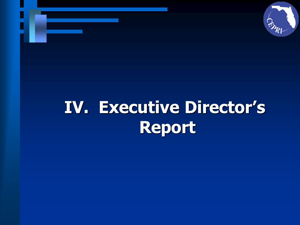 IV. Executive Director's
