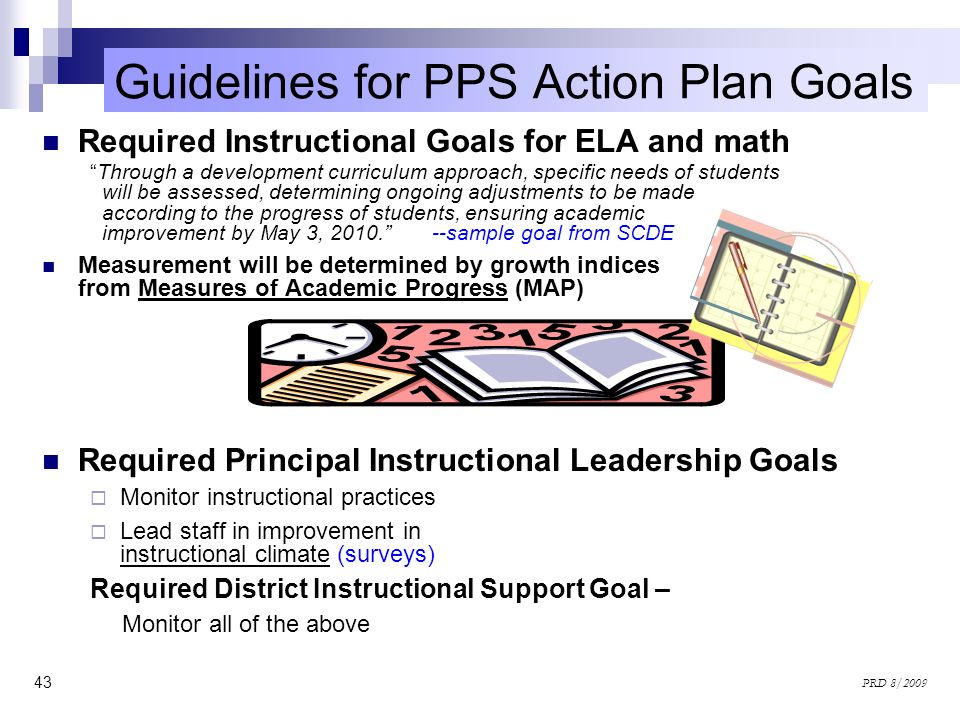 Guidelines for PPS Action Plan Goals
