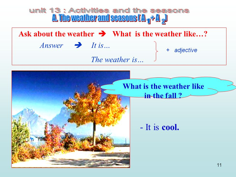 What is the weather like in the fall