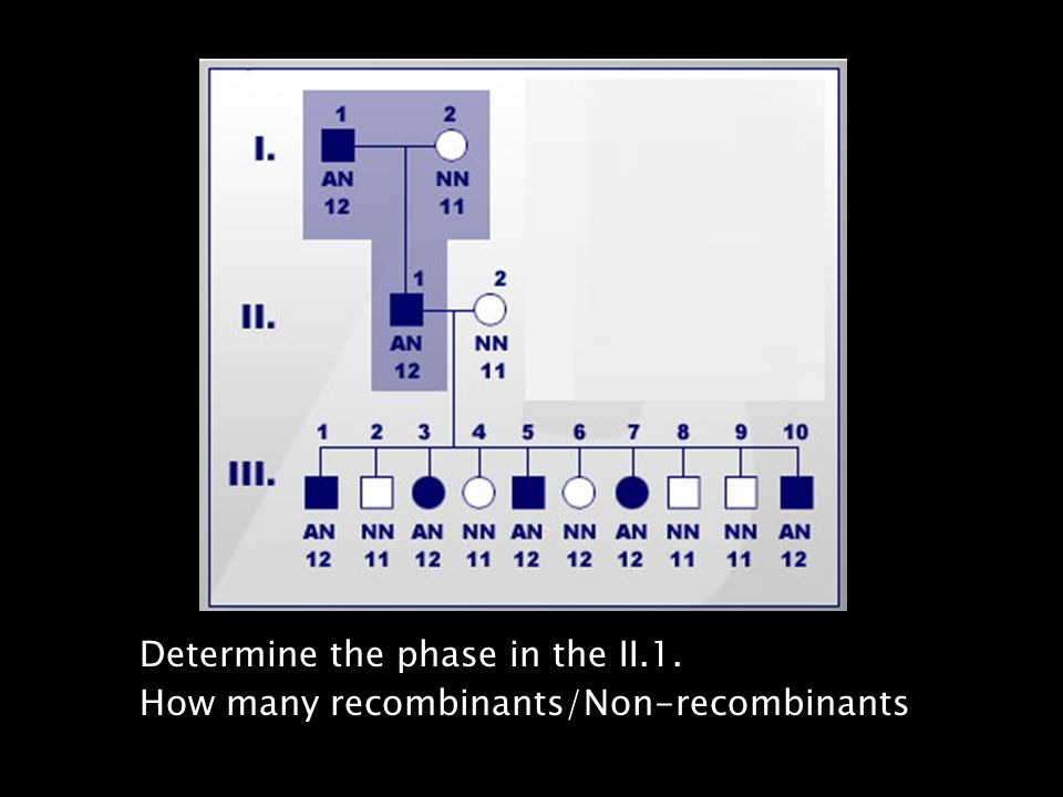 Determine the phase in the II. 1