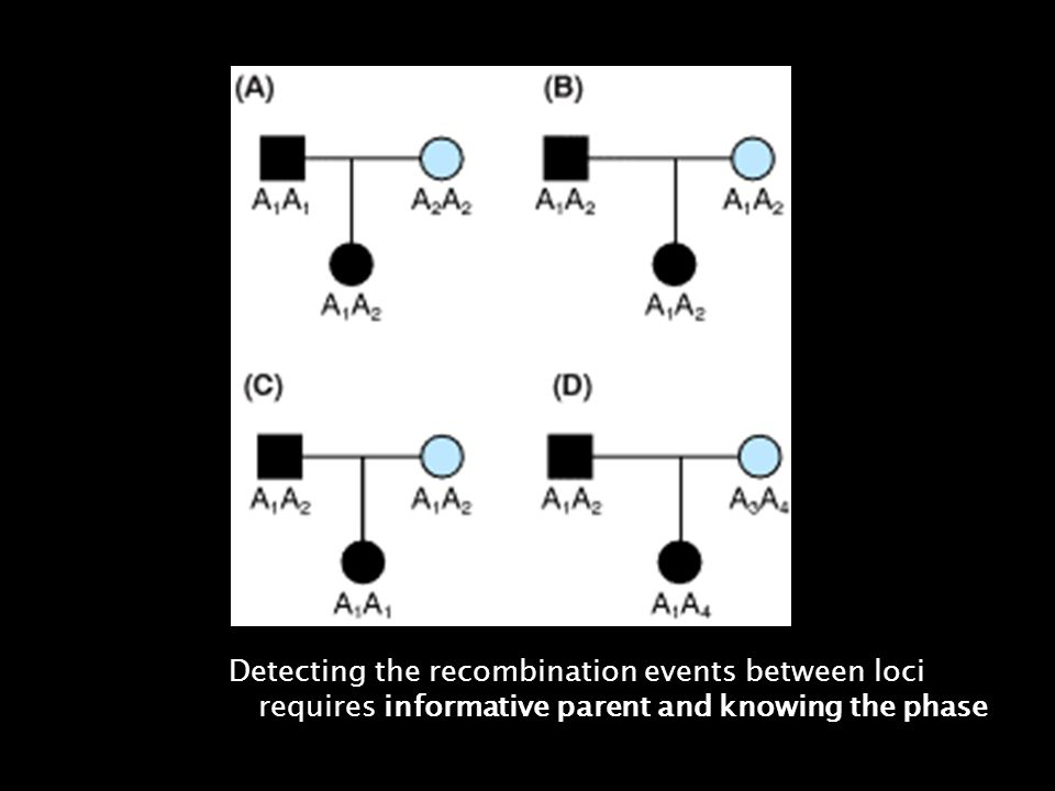 Detecting the recombination events between loci requires informative parent and knowing the phase.