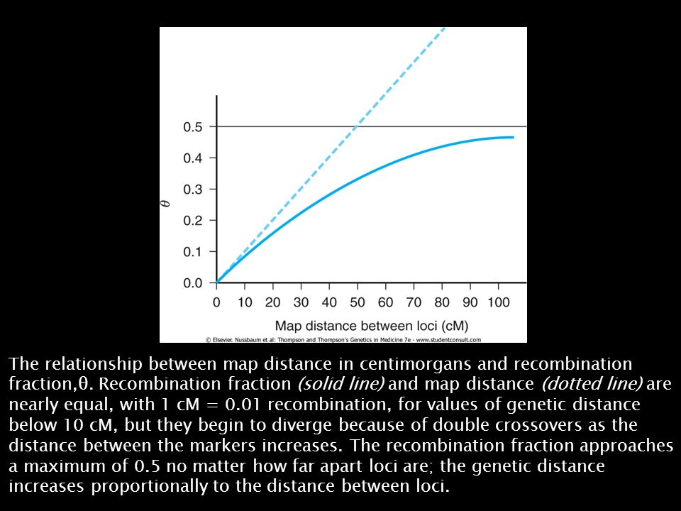 The relationship between map distance in centimorgans and recombination fraction,θ.