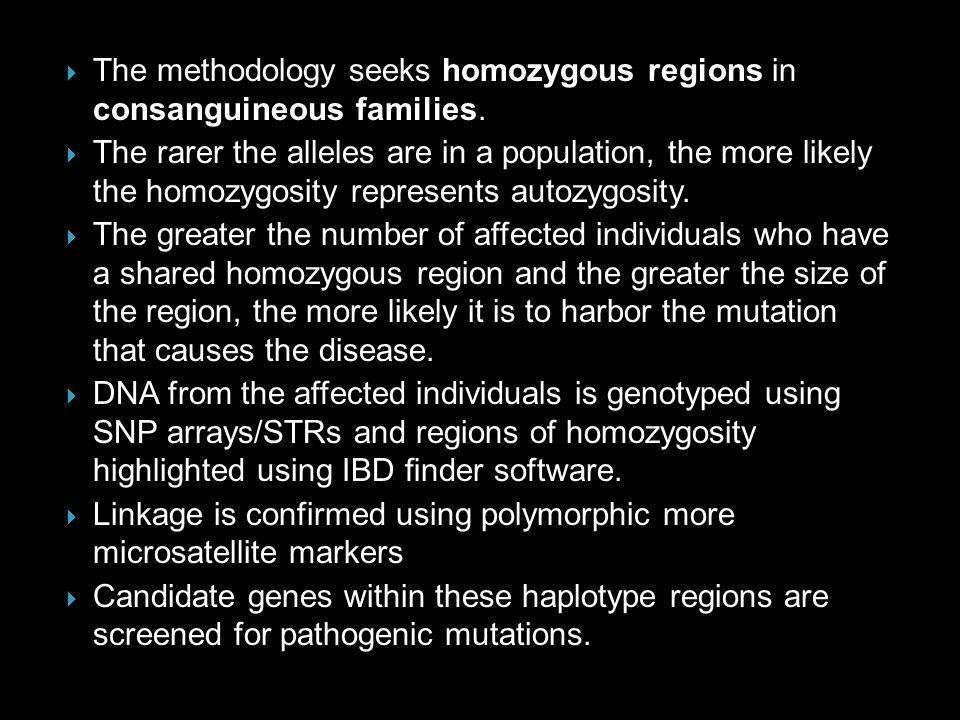 The methodology seeks homozygous regions in consanguineous families.