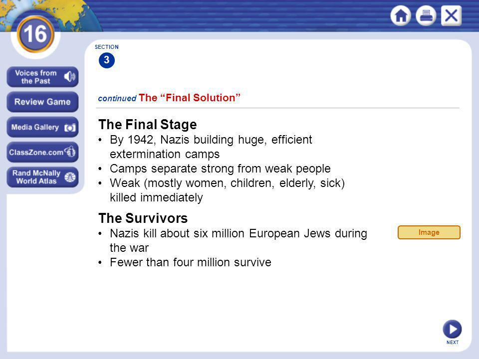 The Final Stage The Survivors