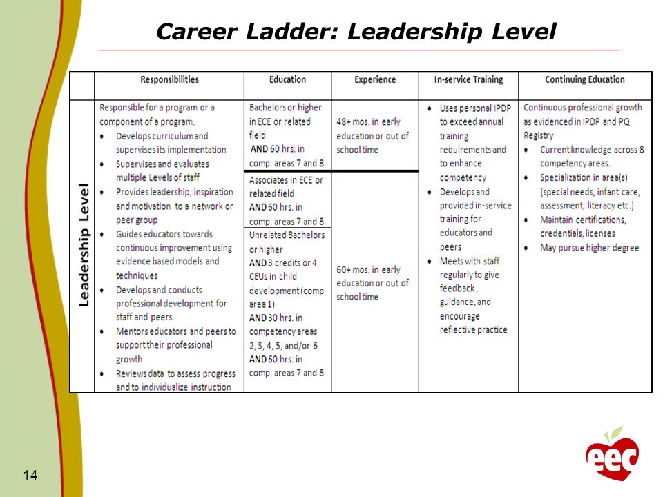 Career Ladder: Leadership Level