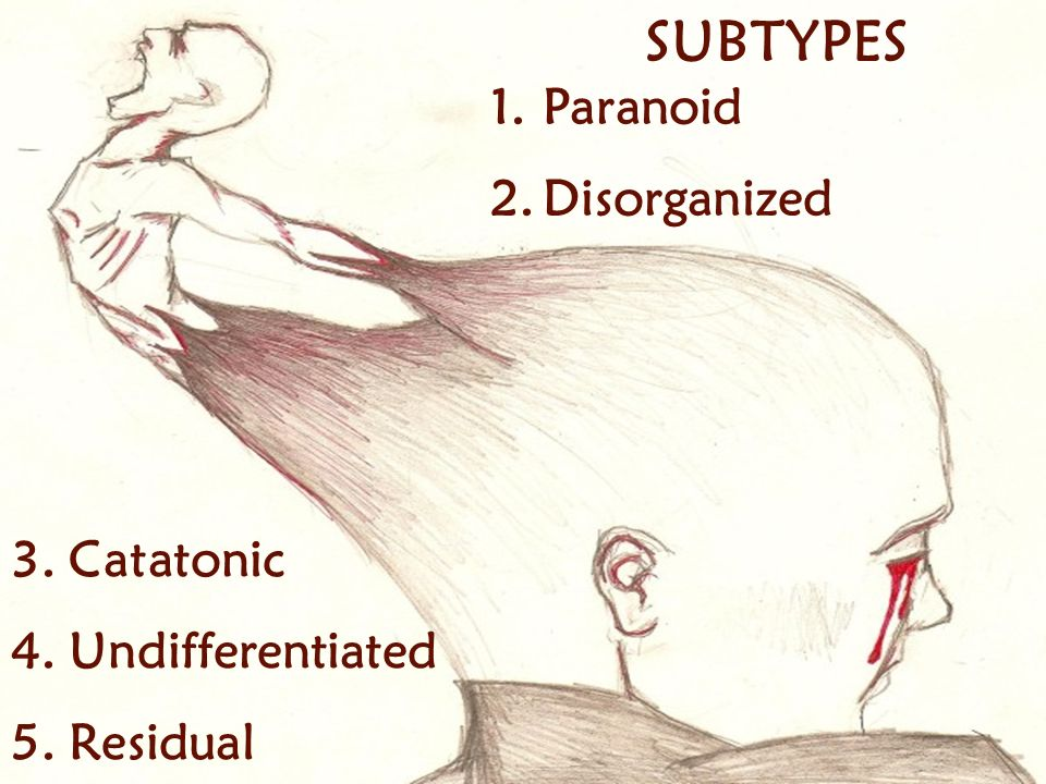 SUBTYPES Paranoid Disorganized 3. Catatonic 4. Undifferentiated