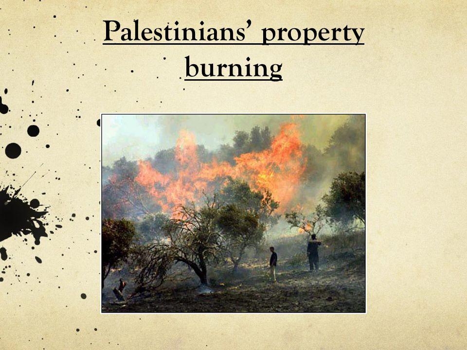 Palestinians' property burning