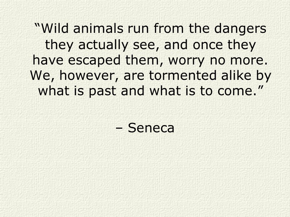 Wild animals run from the dangers they actually see, and once they have escaped them, worry no more. We, however, are tormented alike by what is past and what is to come.