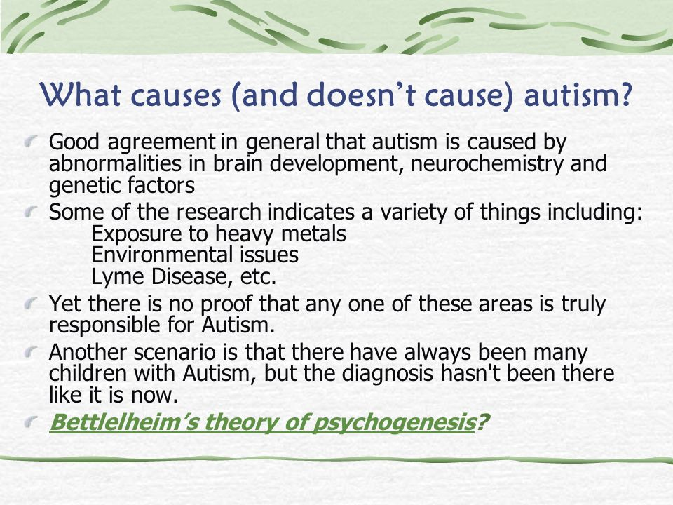 What causes (and doesn't cause) autism