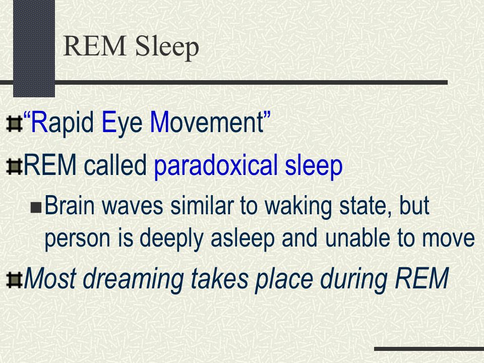 REM called paradoxical sleep