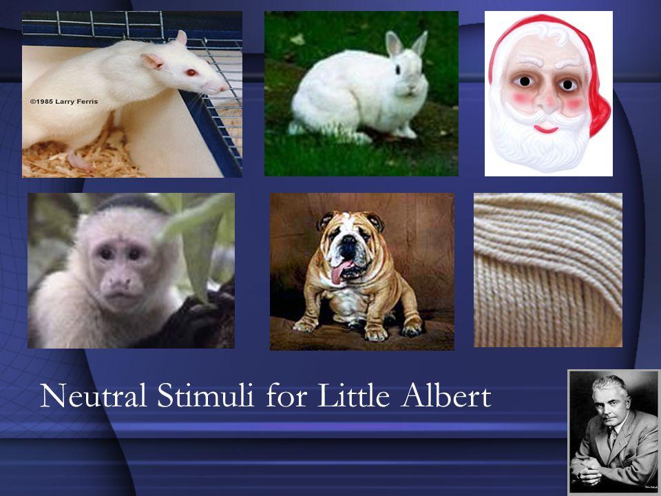 Neutral Stimuli for Little Albert