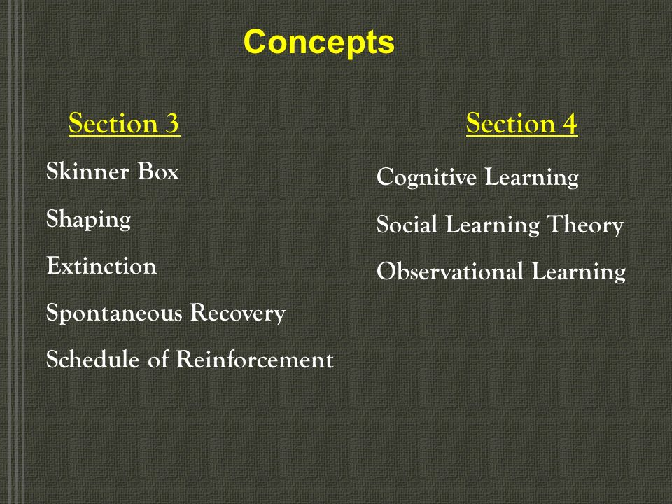 Concepts Section 3 Section 4 Skinner Box Cognitive Learning Shaping