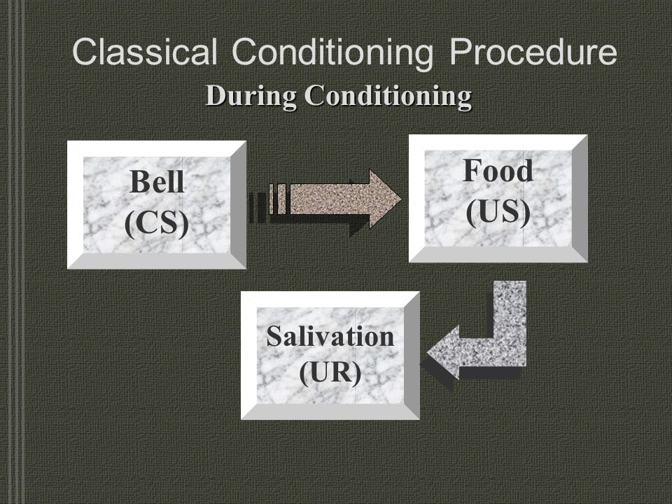 Classical Conditioning Procedure