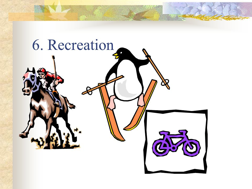 6. Recreation