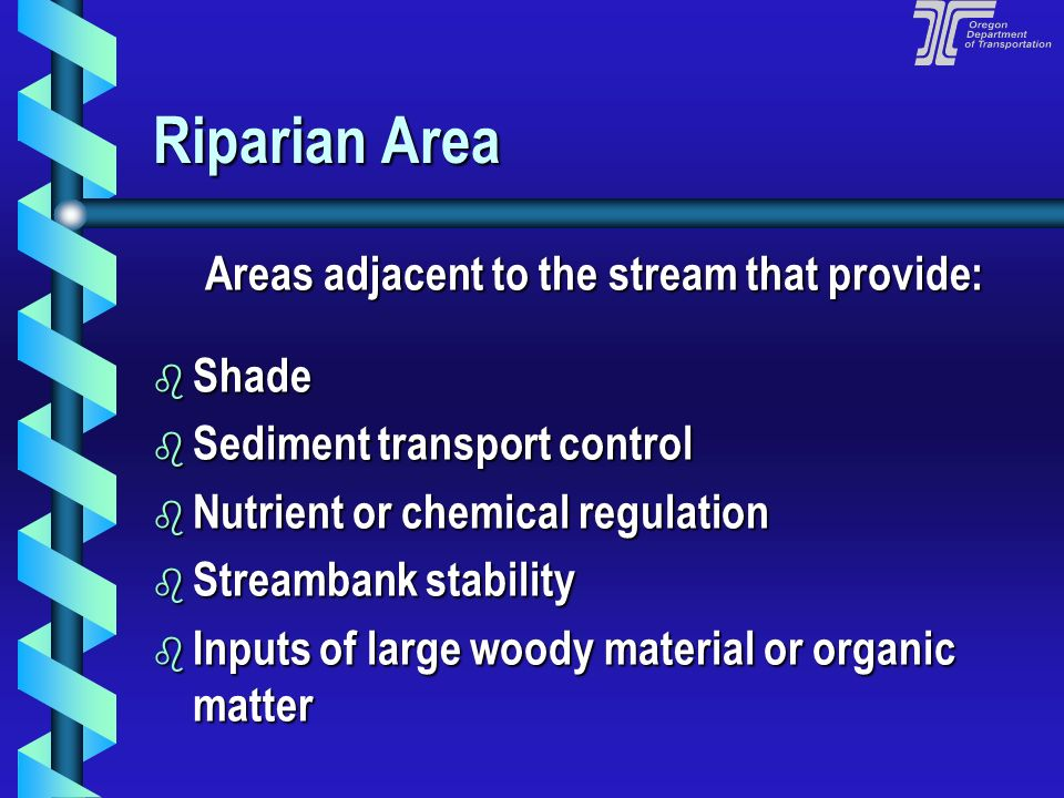 Areas adjacent to the stream that provide:
