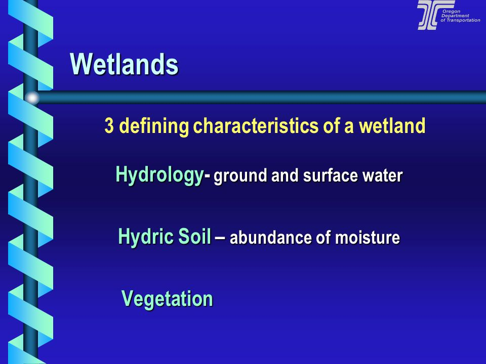 Wetlands 3 defining characteristics of a wetland