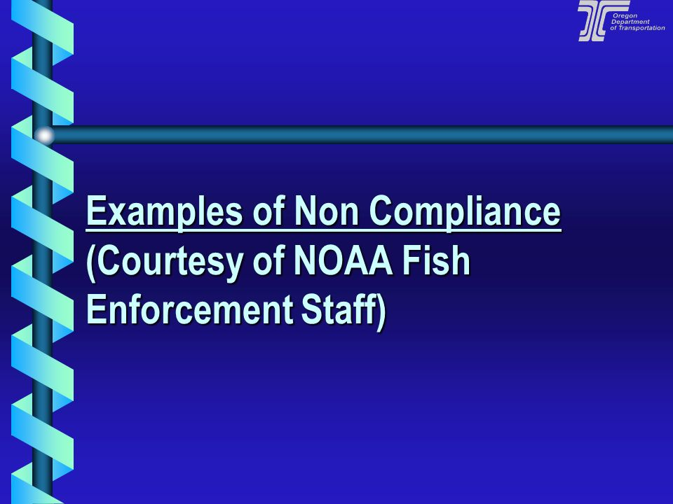 Examples of Non Compliance (Courtesy of NOAA Fish Enforcement Staff)