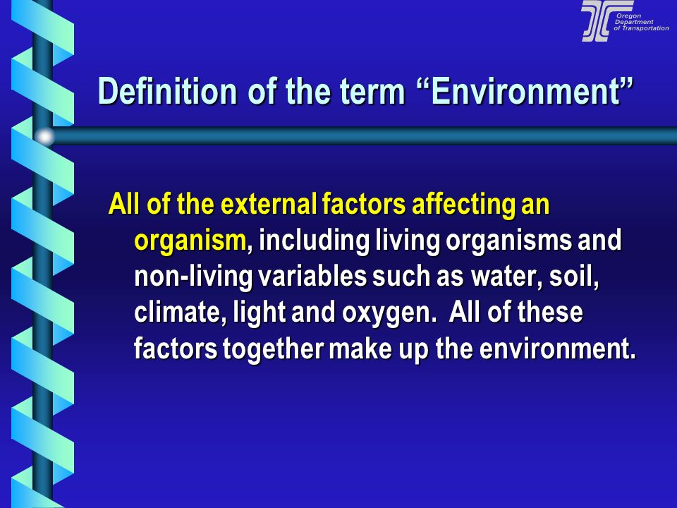 Definition of the term Environment