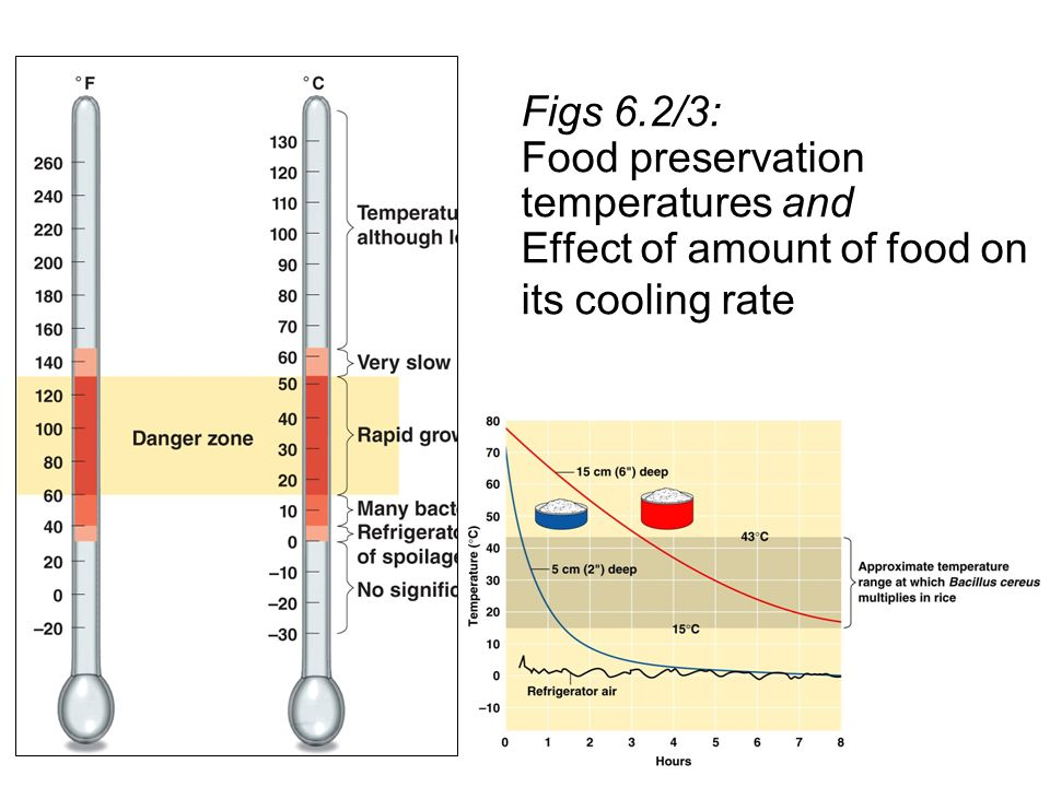 food preservation and effect of temperature Food preservation and security at household level in moderate temperature and humidity which the effect of food preservation on the food security.