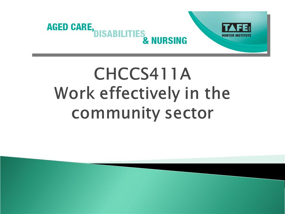 work effectively in the community sector 2 essay