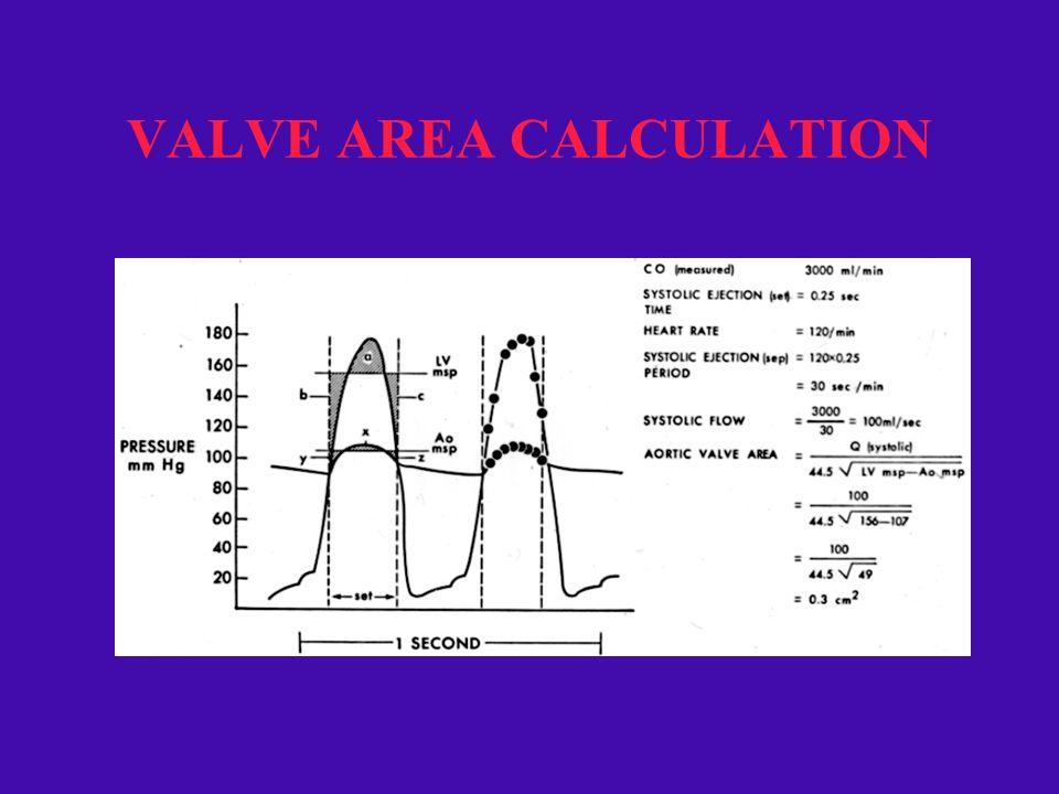 Hemodynamic Assessment Cardiac Catheterization Laboratory