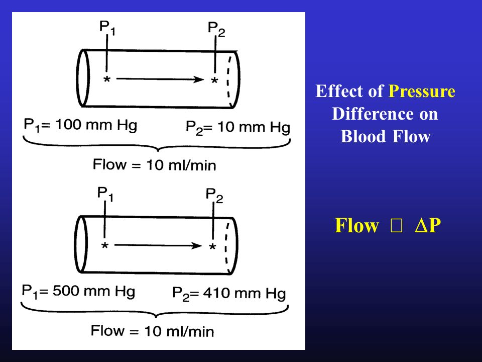 activity 5 effect of vessel radius on pump View notes - pex-05-05 from physiology 201 at american exercise 5: cardiovascular dynamics: activity 5: studying the effect of blood vessel radius on pump activity lab report pre-lab quiz.