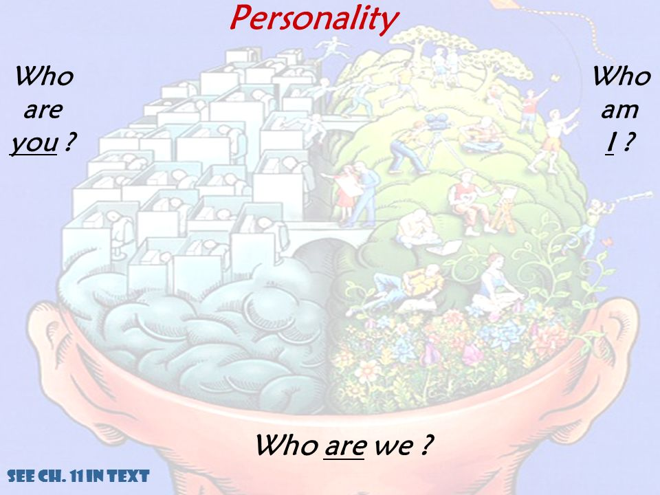 Personality Who are you Who am I Who are we See Ch. 11 in Text